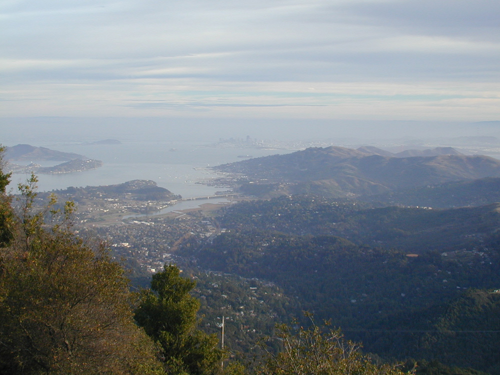 Mt. Tam View